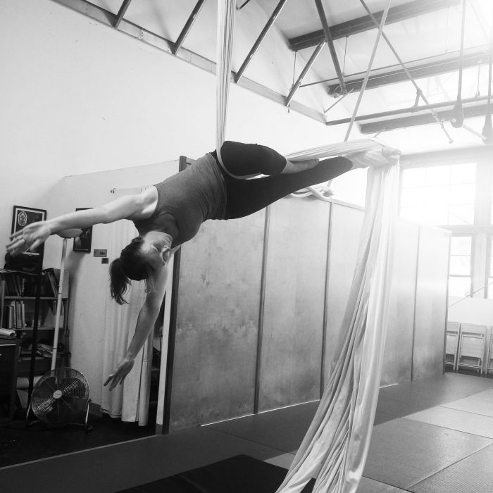 Beginning Aerial and Acrobatics